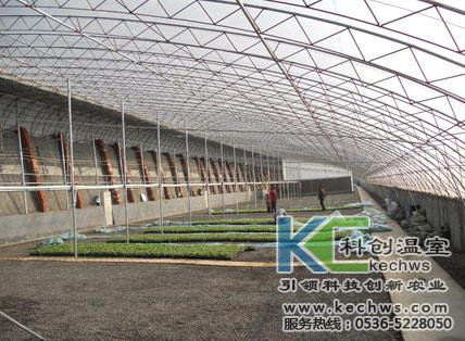 温室大棚建设厂家