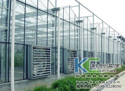 玻璃温大棚建设