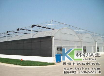 阳光板温室设计