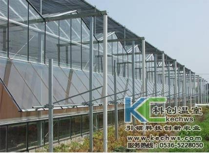 青岛玻璃温室大棚