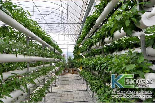 无土栽培,无土栽培技术,发展领域