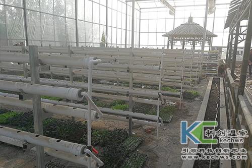 无土栽培,无土栽培技术,工程