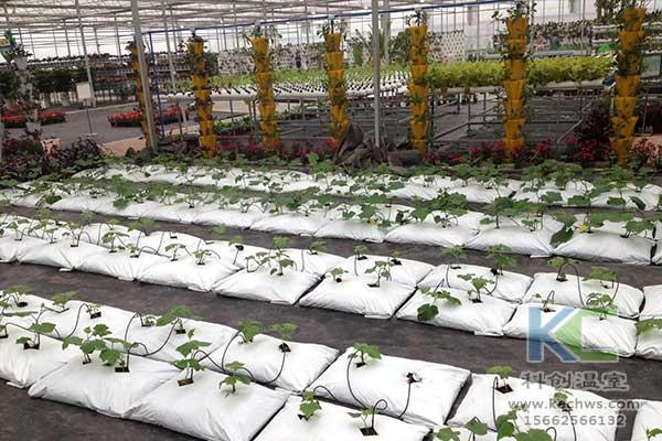 基质栽培,无土栽培,无土栽培技术