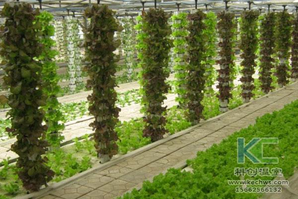 蔬菜大棚无土栽培,无土栽培技术,温室大棚,大棚