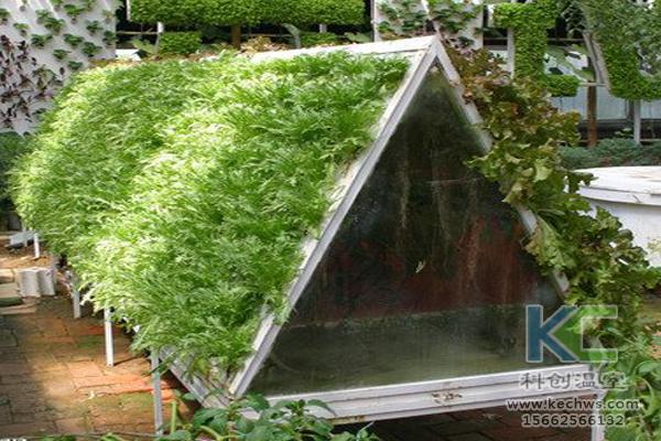 无土栽培技术,无土栽培蔬菜,无土栽培设备,温室大棚