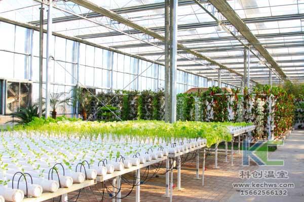 无土栽培,设备,无土栽培设备,无土栽培技术