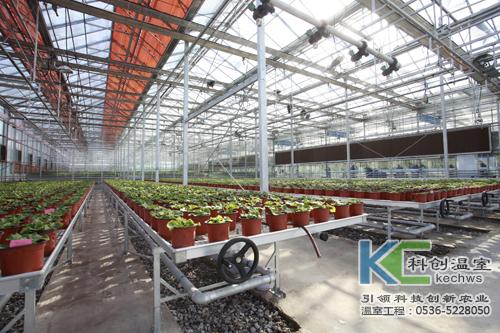 无土栽培,无土栽培技术,市场定位