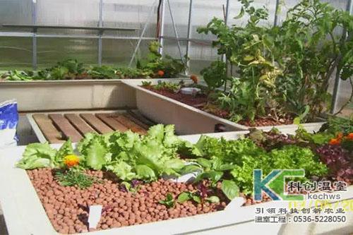 无土栽培,无土栽培技术,基质