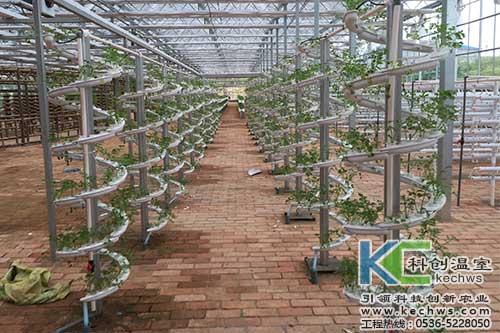 立体栽培,无土栽培,无土栽培技术