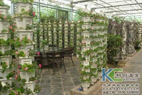 无土栽培,无土栽培技术,植物